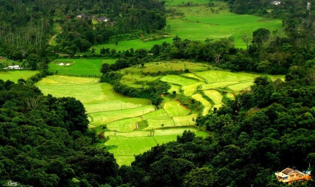 coorg-travel-destinations