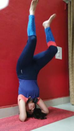 how to do shirshasana headstand  and bhujangasana the