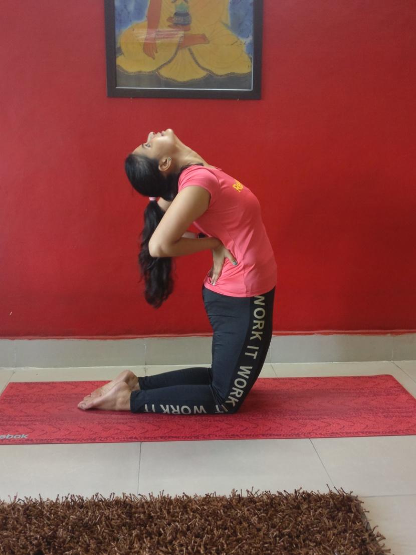 How To Do The Ustrasana ( Camel Yoga Pose ) - Indian Youth